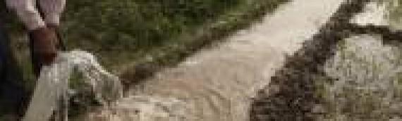 Israel Helps Irrigate Indian Farms