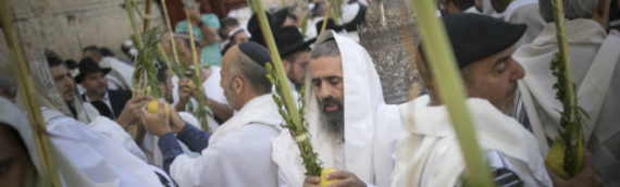 Colel Chabad Builds Massive Sukkah at Western Wall