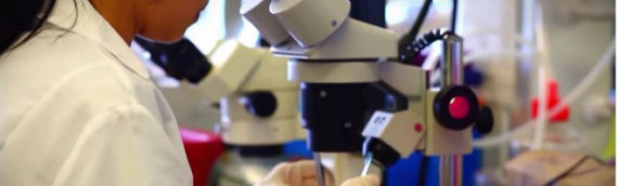 Israeli Scientists Develop Nanoscopic System for Combating Child Cancer