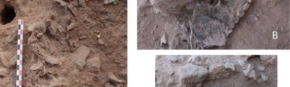 Cremated Remains Found in Israeli Archaeological Site Signify a 7th-Millennium Cultural Shift in Funeral Practices
