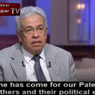 Egyptian Journalist Abdel Moneim Saeed